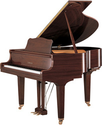 Yamaha GB1 K Walnut Polished